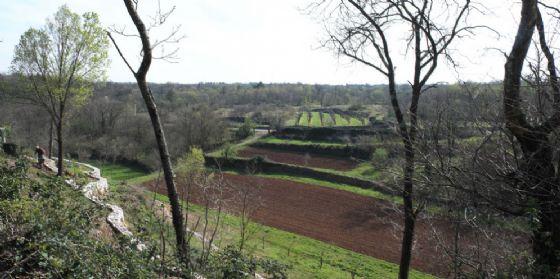 'Il paesaggio che vive. Living landscape': nuovo appuntamento del ciclo di conferenze e visite sul territorio