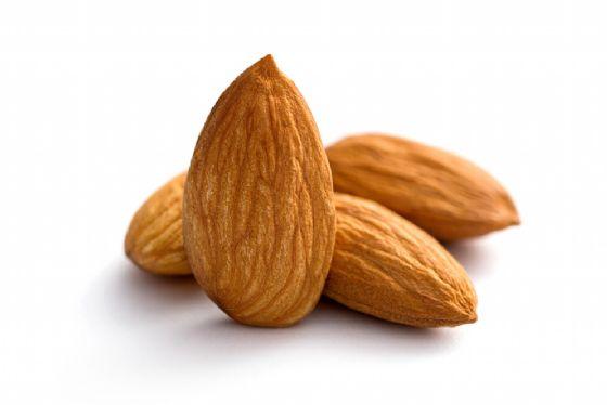 Le mandorle riducono il colesterolo