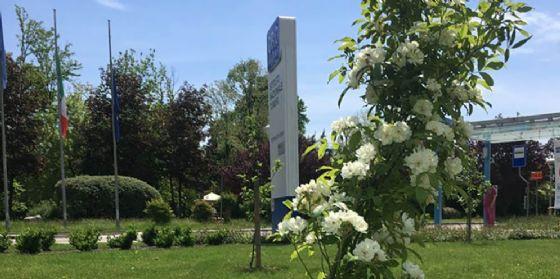 """Cro Aviano: a breve l'inaugurazione di """"Millepetali"""", lo splendido giardino delle rose"""