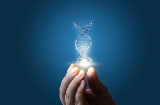 Trovati i geni della longevità