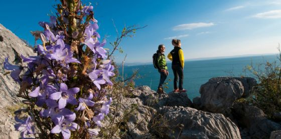 Una passeggiata in Carso per inaugurare la stagione turistica dell'Alpe Adria Trail (© Foto di Marco Milani)