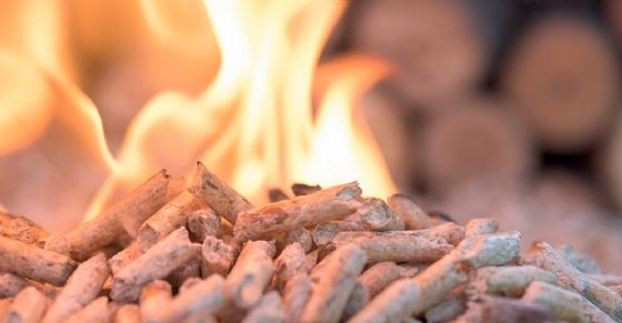 Maxi truffa online di pellet (© Shutterstock.com)