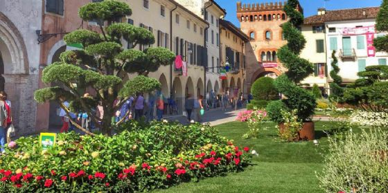 """Successo a San Vito per """"Piazza in Fiore"""", in arrivo il secondo weekend"""
