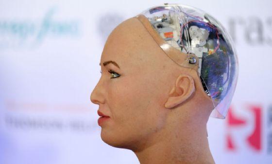 Veri muscoli e metallo, pronti i progenitori dei cyborg - Scienza & Tecnica