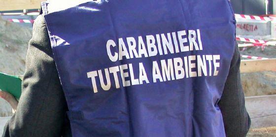 Friuli, denunciate due persone per gestione illecita di rifiuti (© Noe)