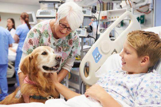 Enaip, via ai corsi per operatori di pet therapy (© Monkey Business Images - shutterstock.com)