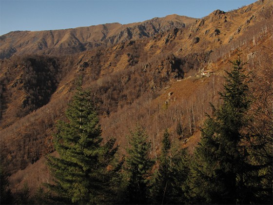 Panorama su cima della Mora e Cima di Bors