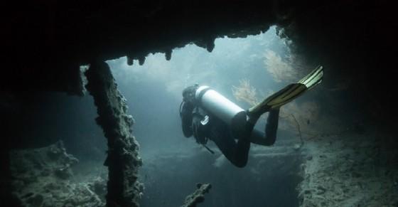 Donna sub dispersa sul relitto Haven - Immagine d'archivio