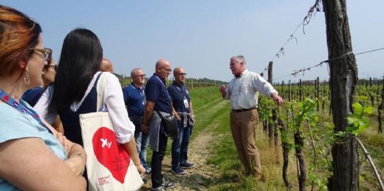 """""""Wine Bus 2018"""": Le vigne in Festa. Da Grado a Buttrio alla scoperta dei sapori del Friuli"""