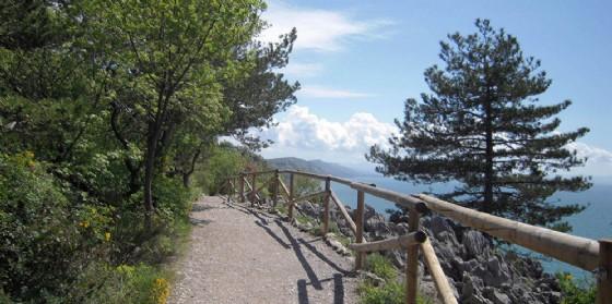 Nelle domeniche dal 5 agosto al 23 settembre passeggiate naturalistiche tra Trieste e Gorizia