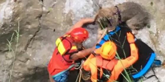 Cerca di salvare il cane e rimane bloccato in una gola di montagna