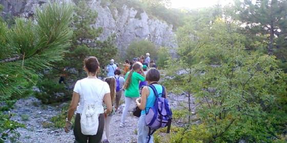 """Per la rassegna """"Piacevolmente Carso"""" arriva un'escursione tra natura e storia sul Monte San Michele"""