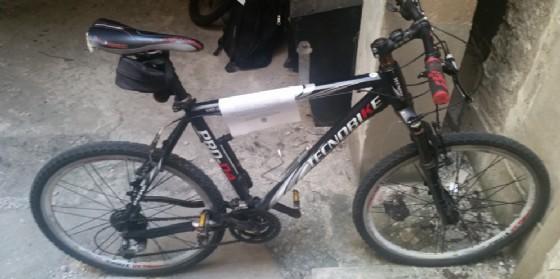 Trieste: la polizia ha trovato una mountain bike e cerca il proprietario