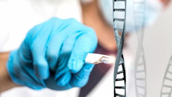 I geni che evitano il cancro negli elefanti