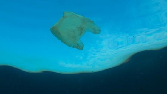 Plastica nei mari: il Fai fa il punto con l'Istituto nazionale di oceanografia