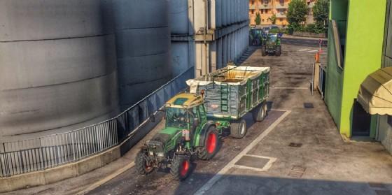 Vendemmia 2018: grande ottimismo dei Viticoltori Friulani La Delizia