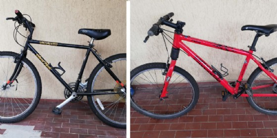 Ritrovate due mountain bike sul Carso: la Polizia cerca i proprietari