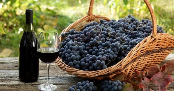 Tutto pronto per la Festa dell'Uva di Gattinara