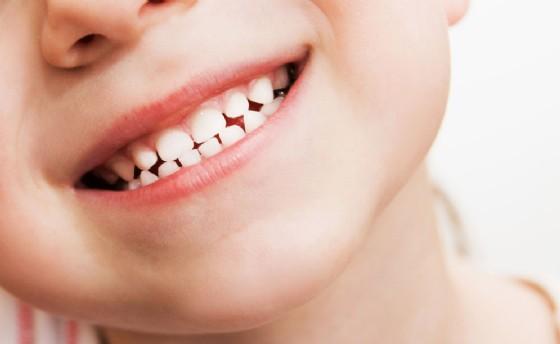 Denti da latte