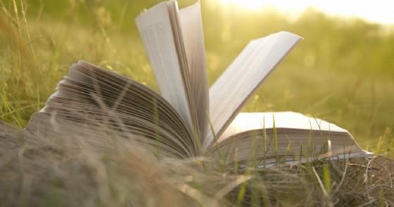 Piverone si veste d'arte con «Libri in itinere»