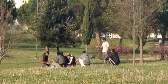 Migranti, a Udine arrivano i cartelli 'anti bivacco'