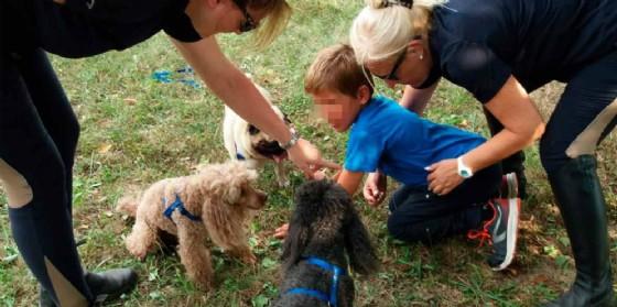 Friuli Dog: pet therapy a cielo aperto con l'Andos Udine