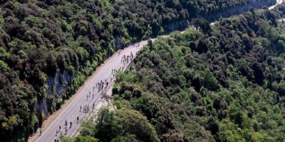 Al via le iscrizioni alla Trieste Half Marathon 2019