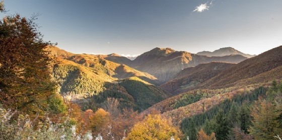 Lo spettacolo del foliage d'autunno all'Oasi Zegna