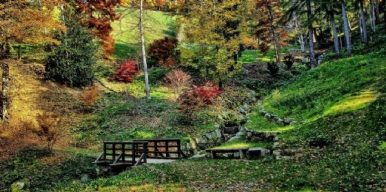 Autunno in Burcina