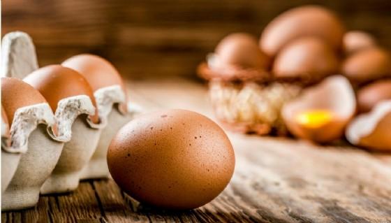 Salmonella, richiamati marlin affumicato e uova fresche