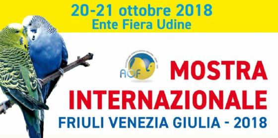 Nuovo appuntamento con la mostra ornitologica internazionale del Fvg