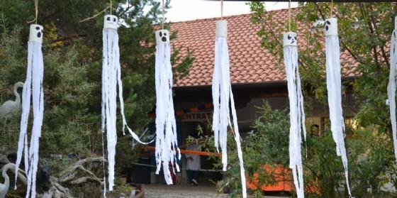 Grande festa di Halloween alla Riserva Naturale del Cornino