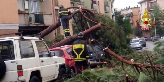 I danni causati dal maltempo a La Spezia