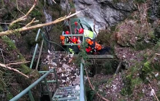 Boscaiolo precipita per 20 metri: è grave