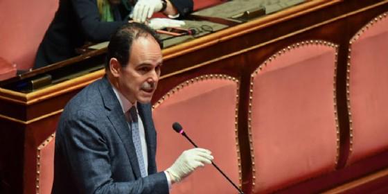 Il Senatore del PD, Andrea Marcucci