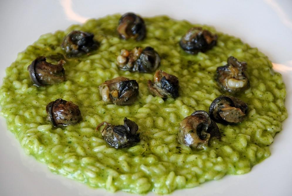 Risotto alle erbe e spinacino con lumache di Cherasco