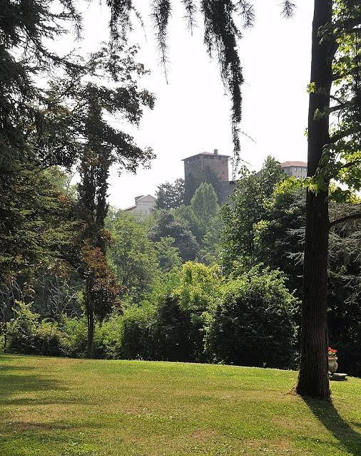 Il bosco che degrada dal Castello di Roppolo