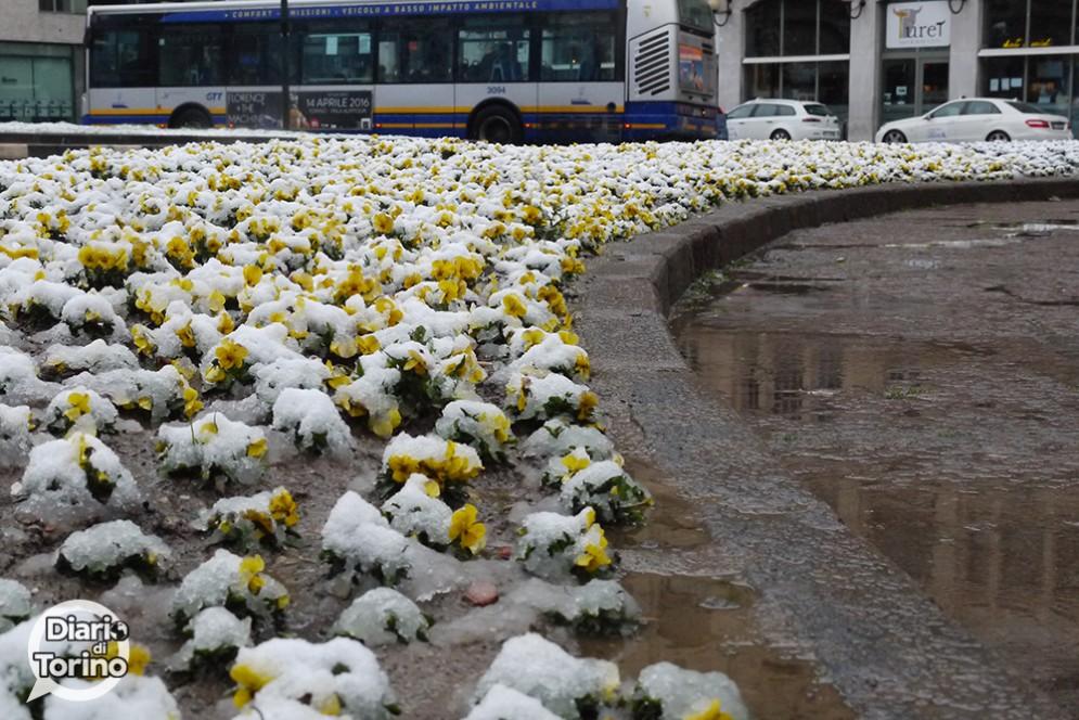 Neve a Torino 10