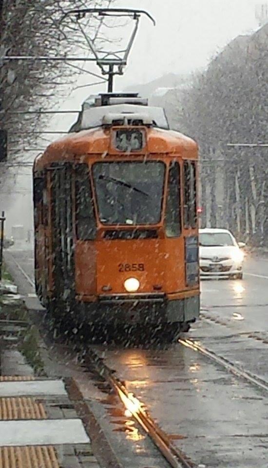 Il tram numero 16, Anna Maria Giordano
