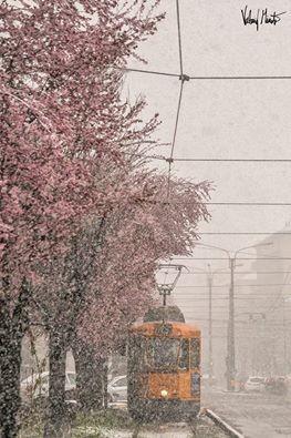 L'improvviso inverno su Torino, Valerio Minato