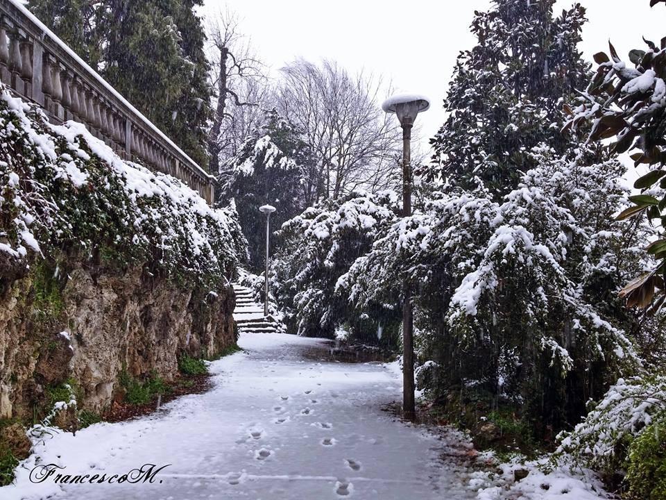Passeggiata al Valentino, Francesco Mangiafico