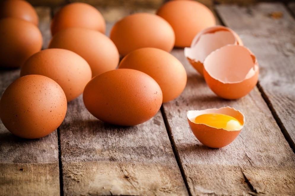 Uova per le plastiche bio
