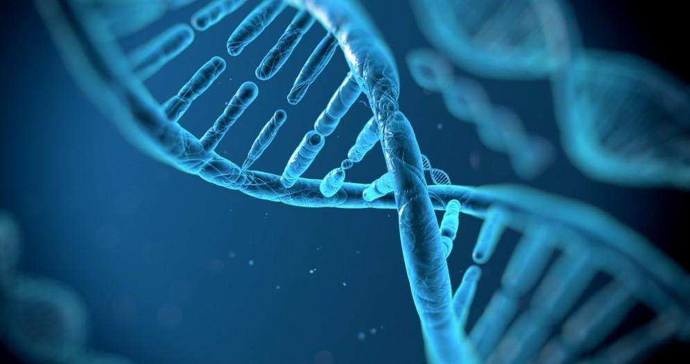 Riprogrammare le cellule per combattere il cancro