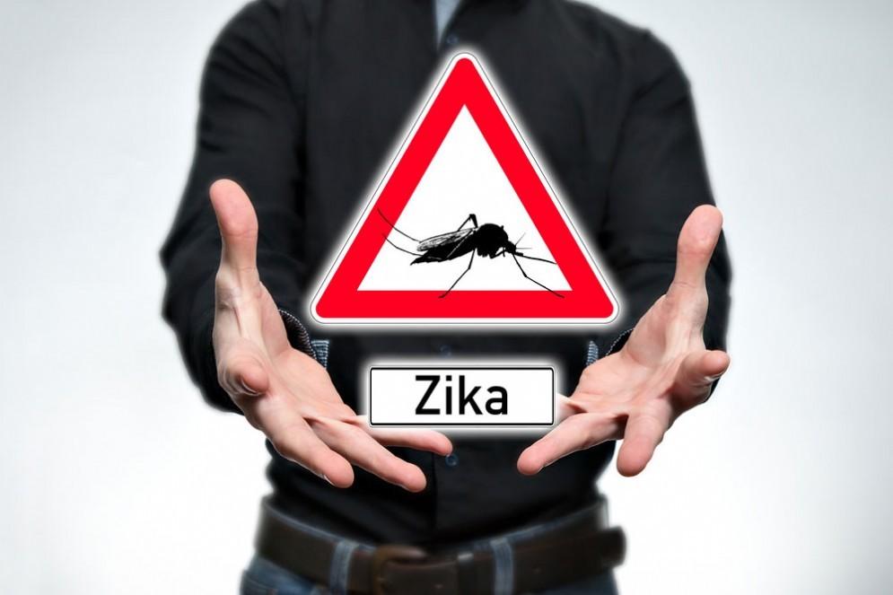 Zika virus, registrato il primo caso dopo sesso tra omosessuali maschi