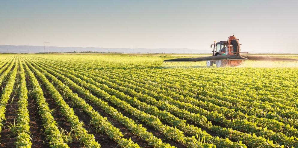 Il Movimento 5 Stelle preoccupato dall'uso dei pesticidi