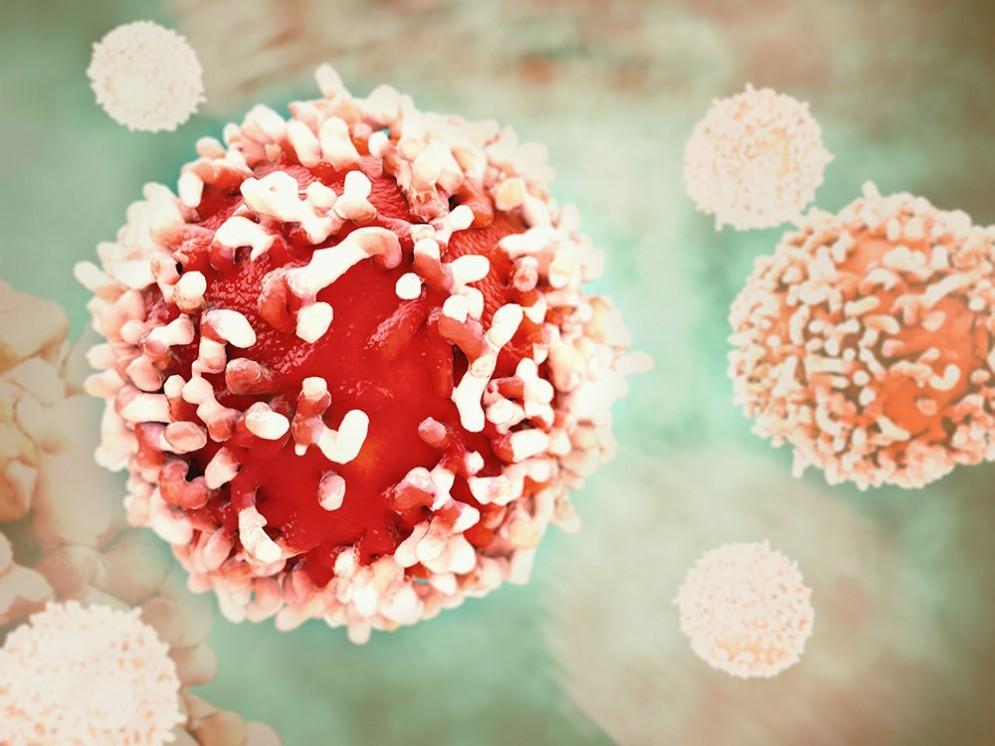 Cancro, potrebbe anche essere contagioso
