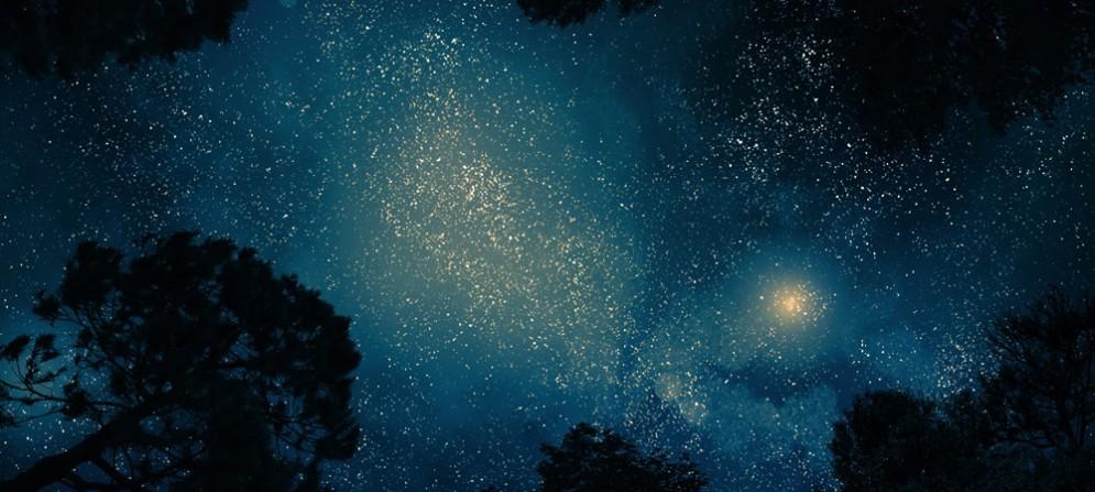 La notte di San Lorenzo in Fvg, ecco alcuni consigli per osservare meglio le stelle