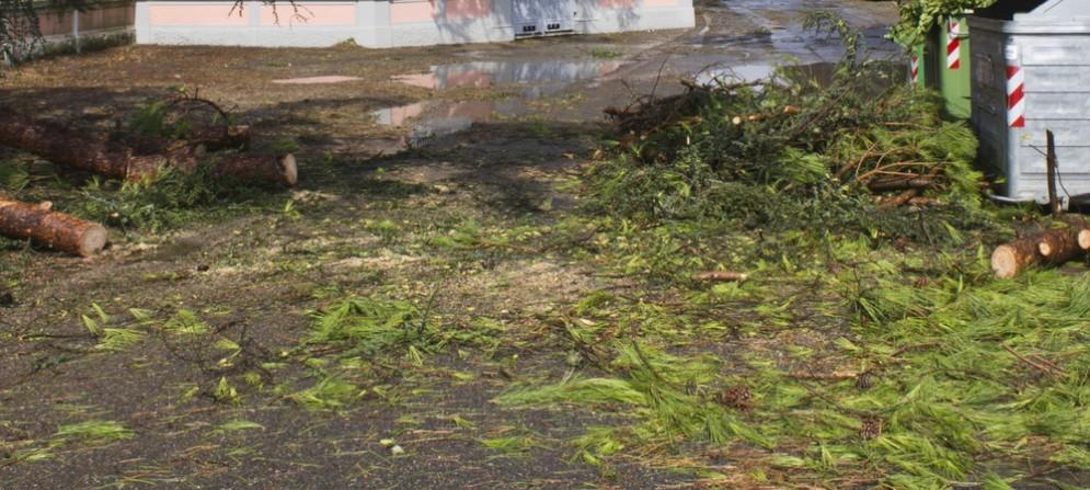 Danni del maltempo estivo: 9 comuni del pordenonese richiedono stato di calamità