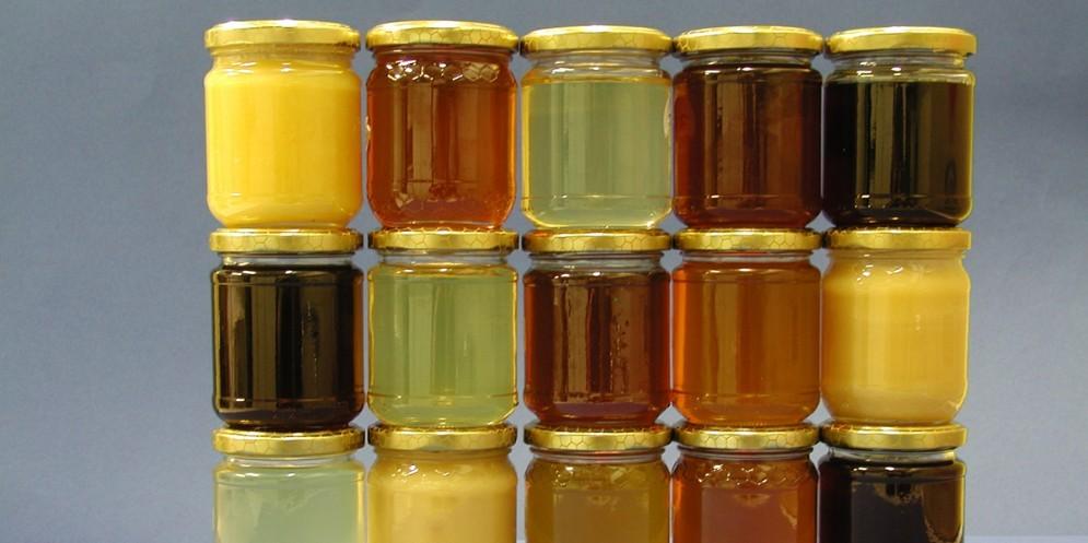A Pantianicco si sceglie il miele migliore del Fvg