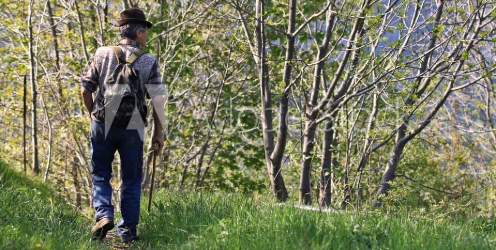 Tragedia in Carnia per un cercatore di funghi